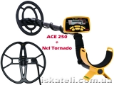Garrett ACE 250 + Nel Tornado